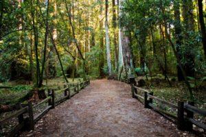 percorso escursionistico
