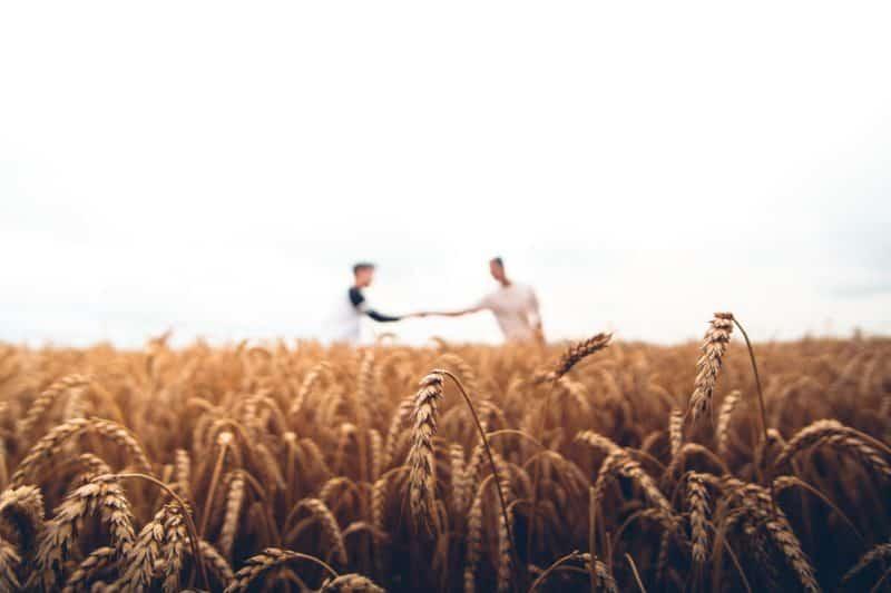 PSR Campania Progetto Integrato Giovani: 140 milioni di euro per i giovani in agricoltura